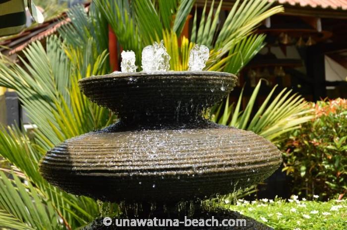 Flower-Garden-Unawatuna18