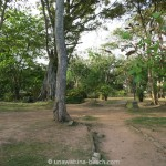 Galle-Park-Sri-Lanka03