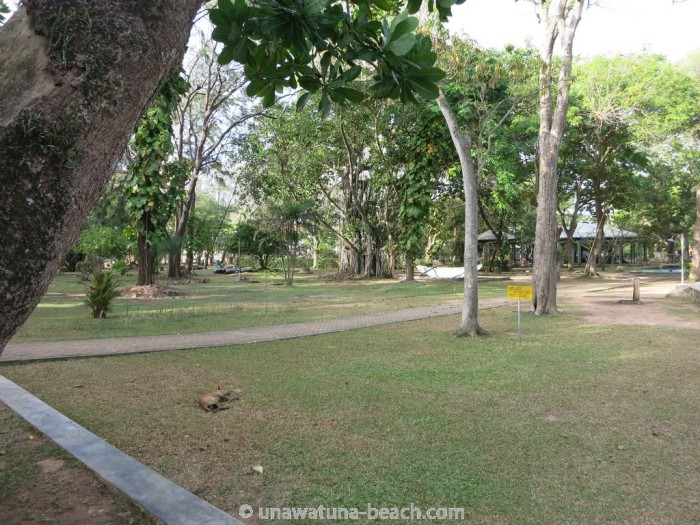 Galle-Park-Sri-Lanka13
