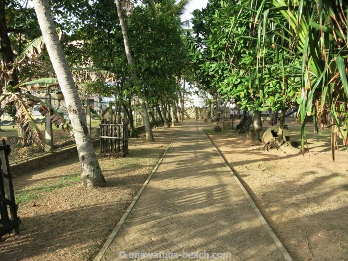 Galle-Park-Sri-Lanka22