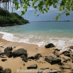 Jungle-Beach-Unawatuna04