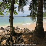 Jungle-Beach-Unawatuna06