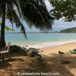 Jungle-Beach-Unawatuna11