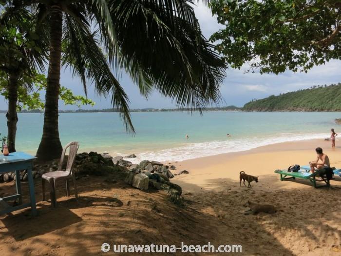 Jungle-Beach-Unawatuna11