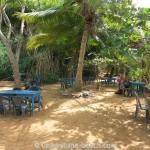 Jungle-Beach-Unawatuna12