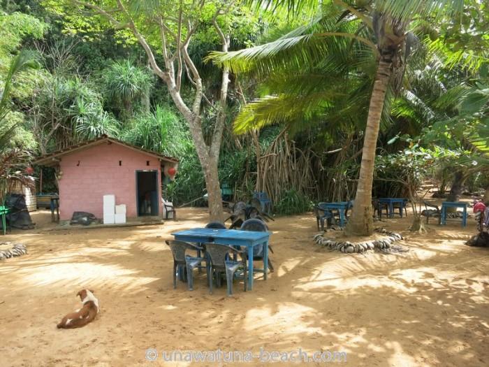 Jungle-Beach-Unawatuna13
