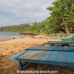 Jungle-Beach-Unawatuna25