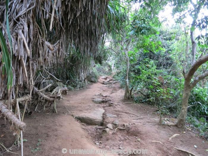 Jungle-Beach-Unawatuna27