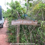 Jungle-Beach-Unawatuna29