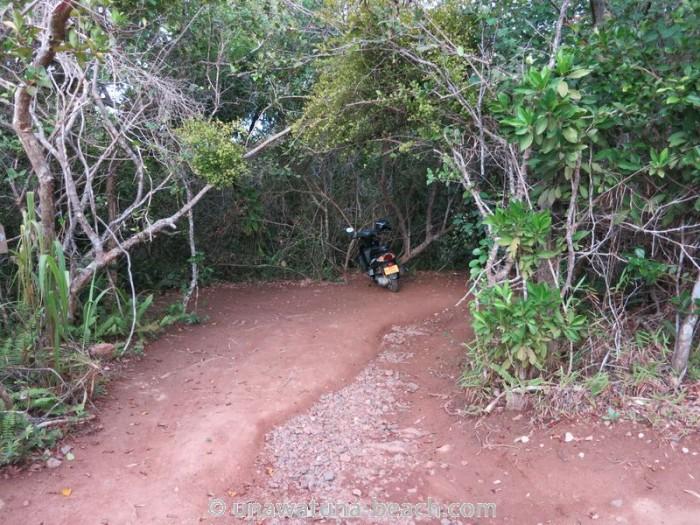 Jungle-Beach-Unawatuna31