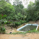 Kottawa Reserve Forest Swimming Pool 07