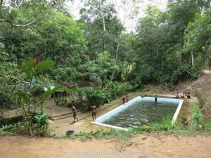 Kottawa-Forst-Pool-04