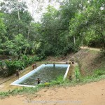 Kottawa Reserve Forest Swimming Pool 06