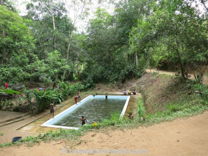 Kottawa Reserve Forest Swimming Pool 06