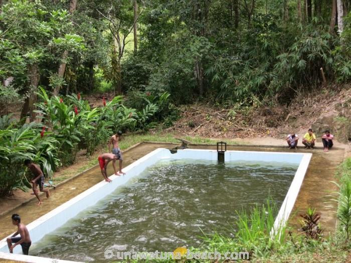 Kottawa Reserve Forest Swimming Pool 05