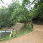 Kottawa Reserve Forest Swimming Pool 04