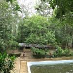 Kottawa Reserve Forest Swimming Pool